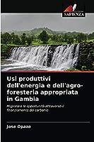Usi produttivi dell'energia e dell'agro-foresteria appropriata in Gambia