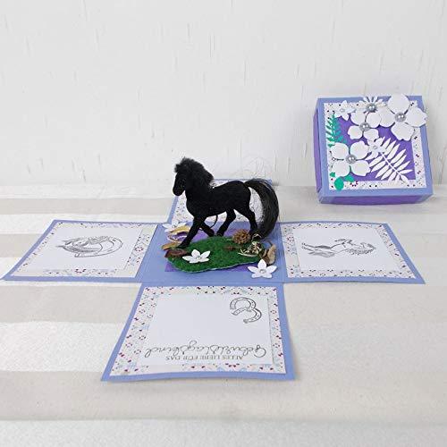 Explosionsbox Geburtstag, lila mit schwarzem Pferd, reiten, Geldgeschenk