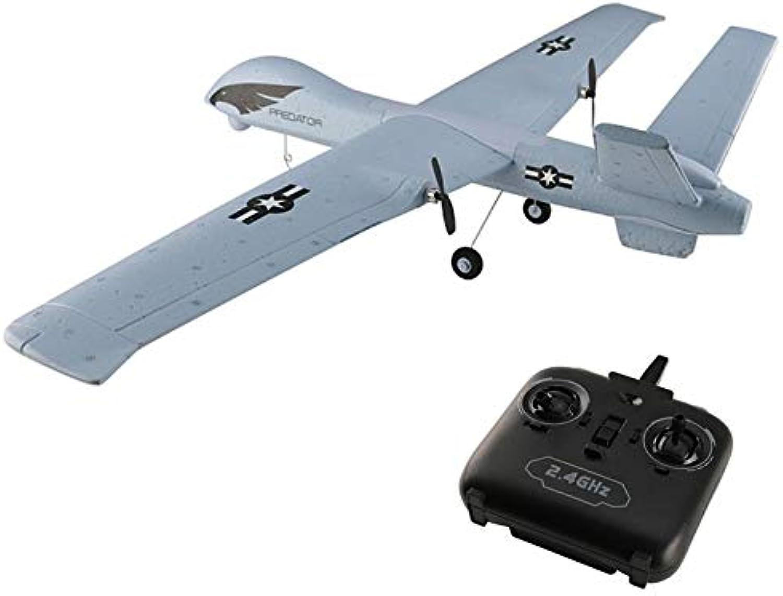Generic Flying Model Gliders RC Plane 2 4G 2CH Predator Z51