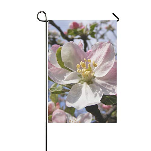 Home Decorative Outdoor Double Sided Apple Blossoms Flowers Blooms Blooming Pink White Garden Flag,house Yard Flag,garden Yard Decorations,seasonal Welcome Outdoor Flag 12 X 18 Inch Spring Summer Gift