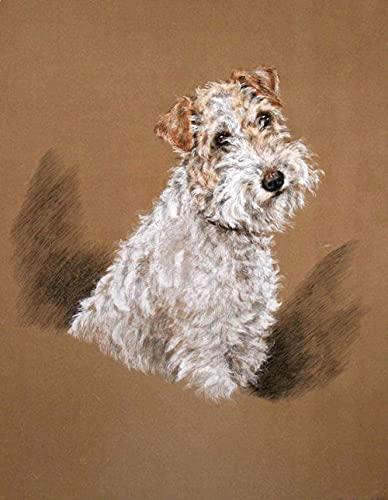 Kit de pintura al óleo / pintura por número / sin borde / pantalla zorro perro mascota conjunto de animales y pintura al óleo para niños