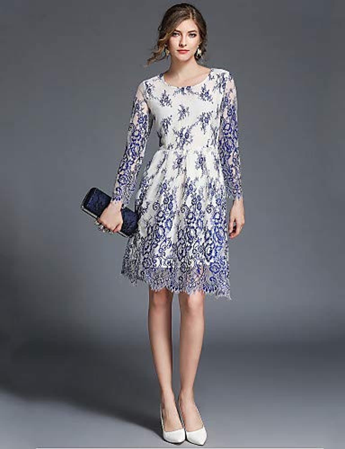 Women's Vintage Sophisticated A Line Dress  Floral, Lace Embroidered