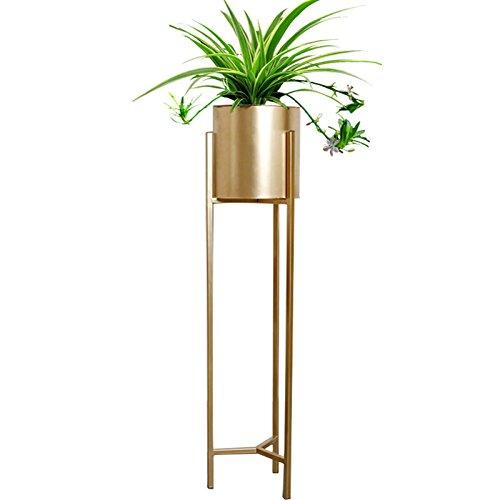 BR Stand de fleur en fer forgé nordique-type de plancher salon décoration intérieure plante verte fleur Pot Rack, or (Couleur : Or, taille : L)