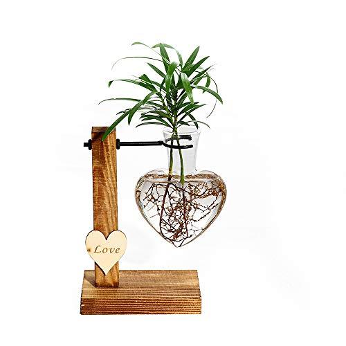 Kingbuy Hydroponic Glass Vase Vintage Desktop Plant Terrarium...