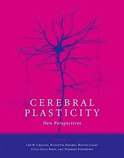 Cerebral Plasticity: New Perspectives (The MIT Press)