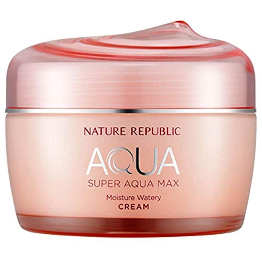 生態学重量使役韓国化粧品NATURE REPUBLICスーパーアクアマックスモイスチャークリーム80ミリリットル水っぽいフェイスクリーム寧アンチリンクルハイド