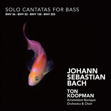 Bach: Solo Cantatas for Bass