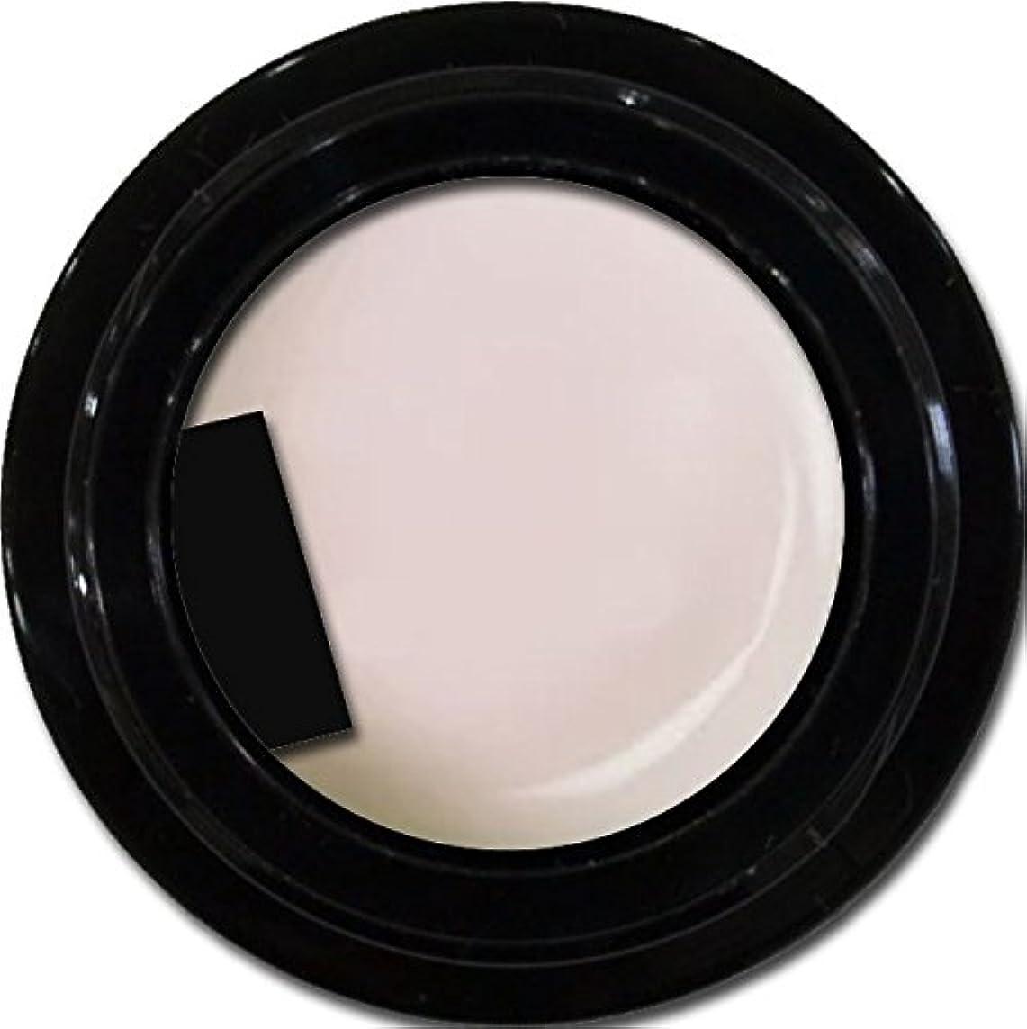 修正悪性のアスレチックカラージェル enchant gel color gel S002 Sheer Snow 3g/ エンチャントジェル カラージェル S002シアースノウ 3グラム