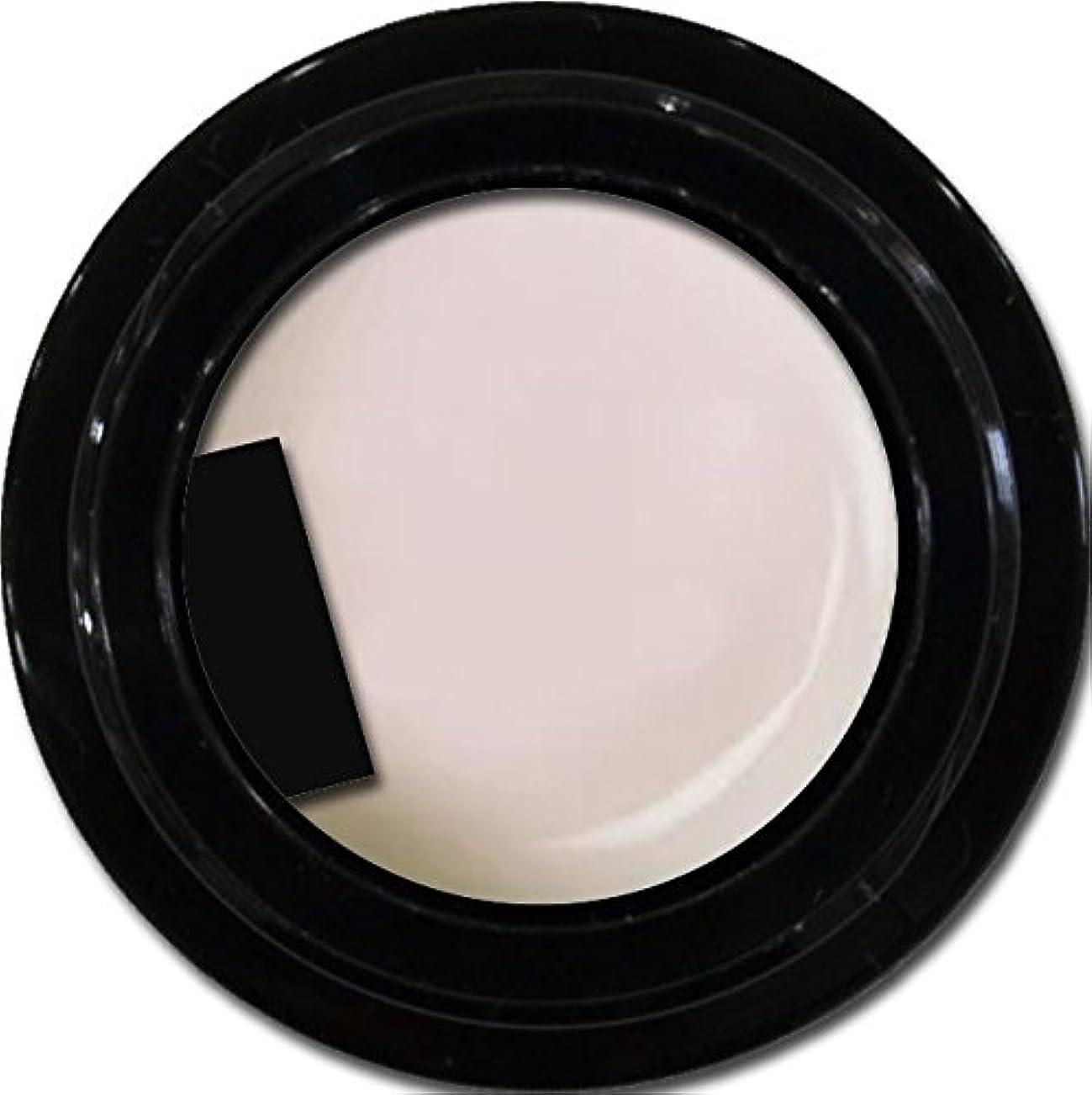 味付け可動式プログラムカラージェル enchant gel color gel S002 Sheer Snow 3g/ エンチャントジェル カラージェル S002シアースノウ 3グラム