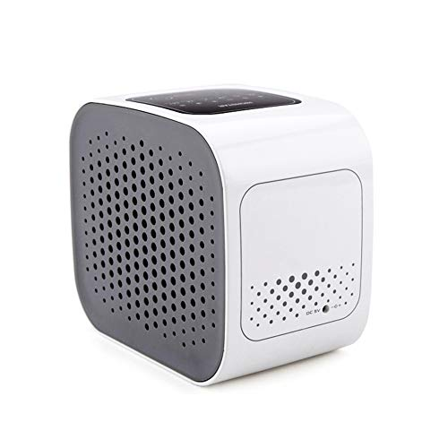Why Should You Buy LILIJIA Portable Air Purifier for Home Smokers Allergies and Pets Hair, True HEPA...