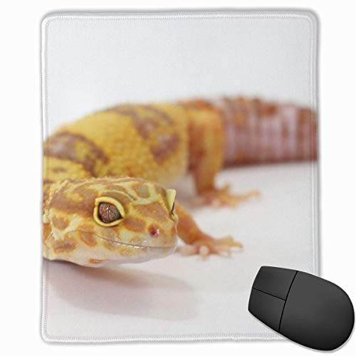 Glattes Mauspad Niedliches Gecko Mobile Gaming Mousepad Work Mouse Pad Büropad
