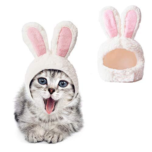 JUSTDOLIFE Haustier Kaninchen Hut, Katze Hase Hut Katzen-Osterkostüm Bunny Kostüm kleine Katze Ostern Kostüm kleines Haustier Halloween Geburtstag Cap