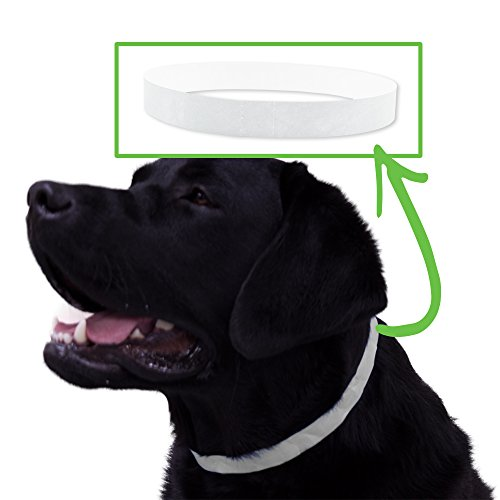 Safe-T Collar 500 Ct. ID Veterinary Bands for Animals - White