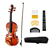 JUAREZ Collé Violin Kit, Full Size 4/4 White Pine Top, Solid Maple Back
