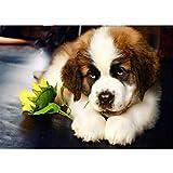 Kit de pintura de diamante 5D por número, pintura de diamante 5D, lindo perro diamante arte completo taladro diamante bordado punto de cruz cuadros artes artes manualidades para adultos 40 x 30 cm