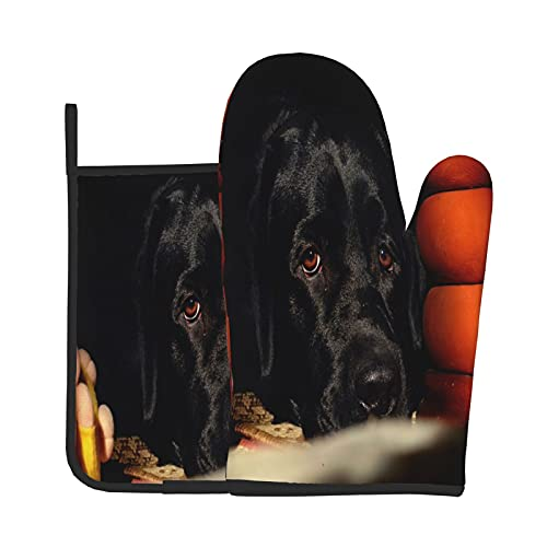 Xiaoxian Black Labrado - Juego de 3 guantes de horno para mujer con una cacerola resistente al calor y suave forro de algodón para horno de cocina, barbacoa, asado, soldadura para hornear, 11 pulgadas