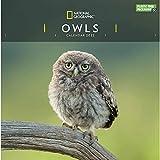 National Geographic Owls 2022 - Calendario da parete, 30,5 x 30,5 cm, confezione in plastica