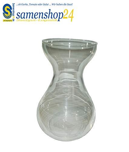 Samenshop24® Hyazinthenglas (klar), 1 Stück, Ideal für präparierte Hyazinthen, Vase für Schnittblumen, Deko, Premium Qualltität