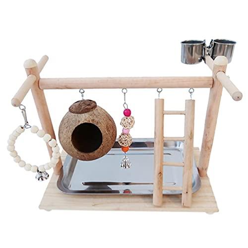 unknows Parrot Bird PlayStand Madera Perca Patio Gimnasio Concha de Coco Jaula de Aves Escalera con Juguetes de Ejercicio Tazas de Alimentación para Conure Lovebirds Conure juguetes