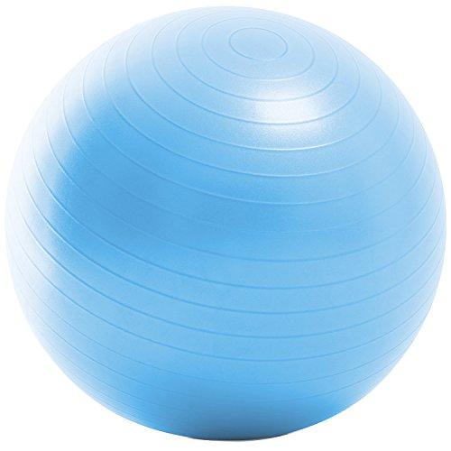 La-VIE(ラヴィ) バランスボール ノンバーストジムボール55cm ライトブルー フットポンプ 紙メジャー付き 3B-3129