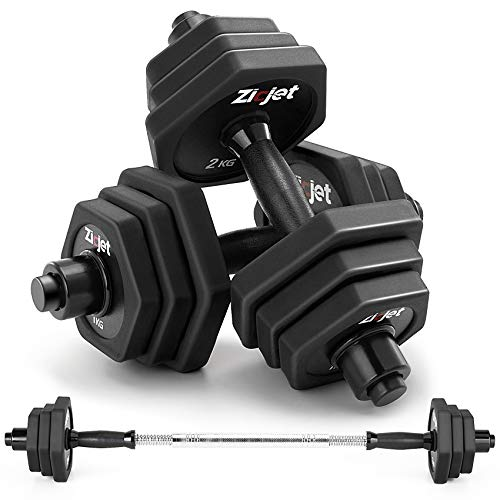 Zicjet 44Lbs Dumbbells Set, Adjustable Weights Solid Steel Dumbbells Pair for Adults Home Fitness Equipment Gym Workout Strength Training with Connecting for Men Women Used as Barbells(Black)