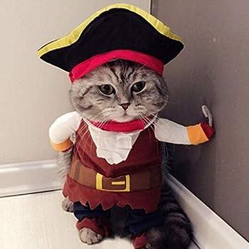 simpyfine Costumes Drôles pour Le Cosplay De La Robe du Chat pour La Fête du Festival De Pâques à Noël Halloween (Pirate, XL)
