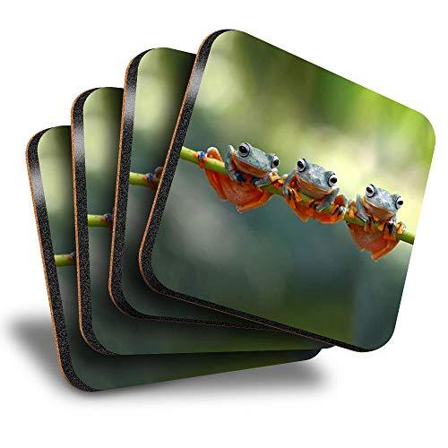 Destination Vinyl ltd Great Posavasos (juego de 4) cuadrados, diseño de ranas de árbol Java, rama voladora bebida, posavasos brillantes/protección de mesa para cualquier tipo de mesa #15888