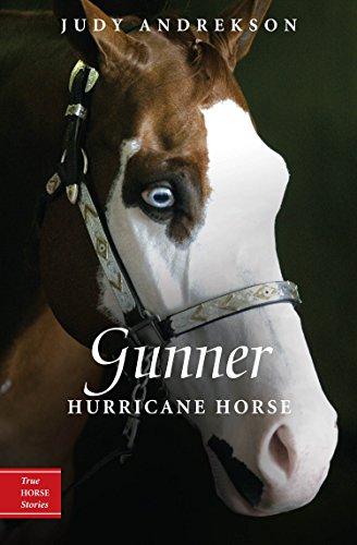 Gunner: Hurricane Horse (True Horse Stories)