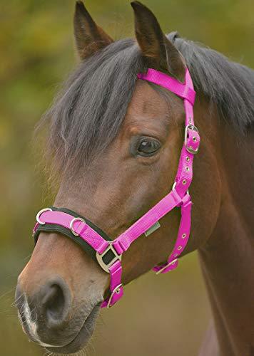 Reitsport Amesbichler Economic Kappzaum aus Nylon färbig gepolsteter Nasenrücken, pink, Gr. Pony
