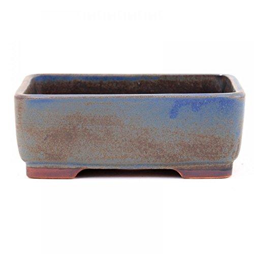 Bonsaï – Coupelle rectangulaire 15 x 11,5 x 5,5 cm, bleu/marron 15018