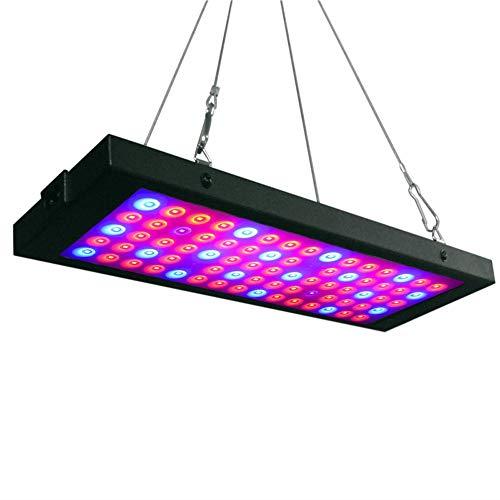 Plantenlamp, volledige spectrum, uv-plantenlamp, volspectrum, kweeklamp, voor fruit, groenten, fruit, lamp, parels voor kamerplanten