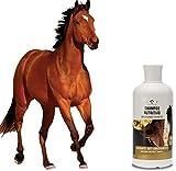 41WAq1i7YuL._SL160_ I migliori shampoo per Cavalli: il tuo cavallo pulito e sano