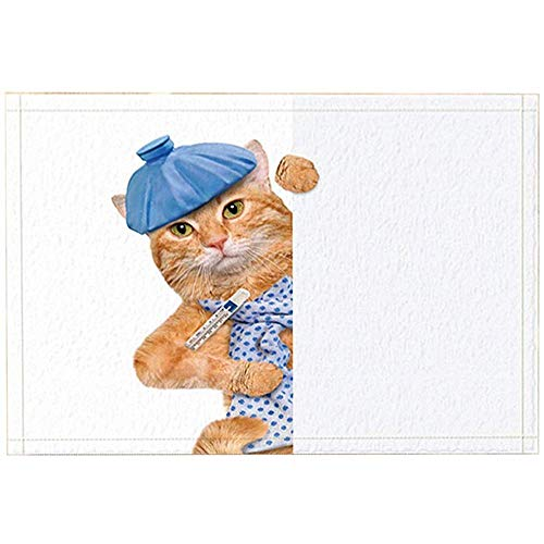 SESILY Kids Decor, zieke kat verborgen het gordijn met thermometer badtapijten, anti-slip deurmat deurmat