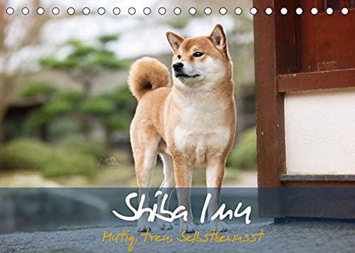 Shiba Inu - mutig, treu, selbstbewusst (Tischkalender 2022 DIN A5 quer)
