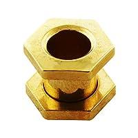 ヘキサゴンゴールドアルマイト316Lサージカルスチールスクリューフィットフレッシュトンネル