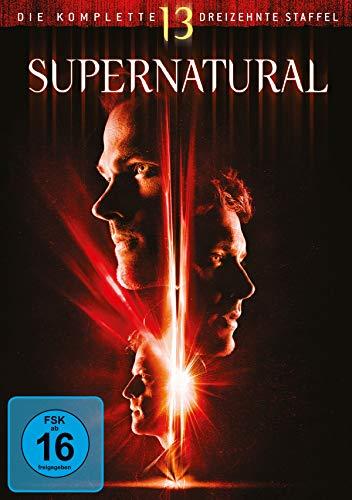 Staffel 13 (5 DVDs)
