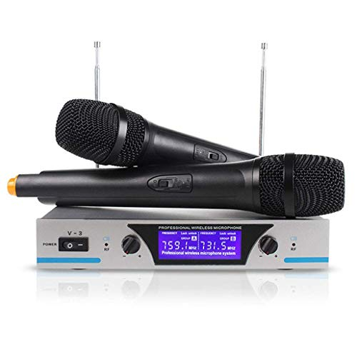 Draadloos microfoonsysteem voor de professionele microfoon van karaoke met draagbare ontvanger, dual kanalen met 2 handmicrofoons ontvangers van de serie 100 m.