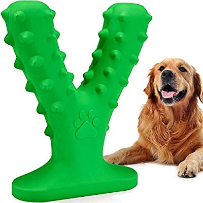 Dog Toothbrush Chew Toy Squeaky Teeth Cleaning Toy Puppy Brushing Stick Dental Oral Care for Small Medium Dogs
