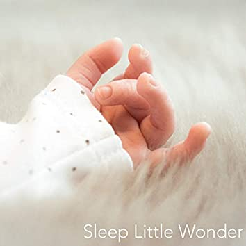 Sleep Little Wonder