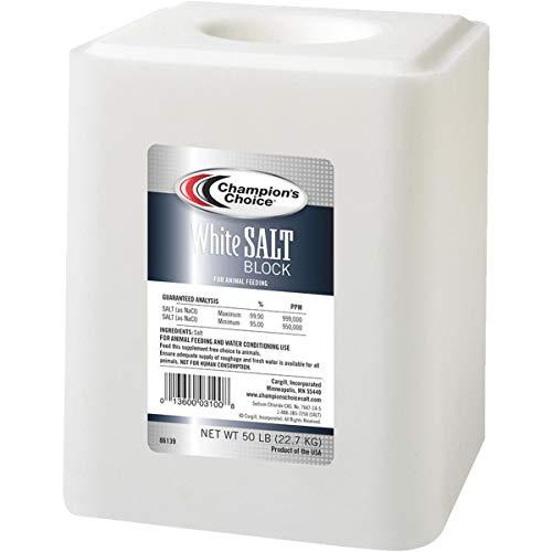 Cargill Salt Inc SaltBlock-50, White