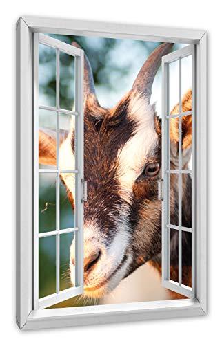 Pixxprint schattige geiten, ramen canvasfoto | muurschildering | kunstdruk hedendaags 120x80 cm
