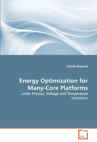 Energy Optimization for Many-Core Platforms