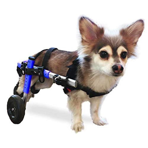 Walkin' Wheels Dog Wheelchair - for Small Dogs 11-25 Pounds - Veterinarian Approved - Dog Wheelchair...