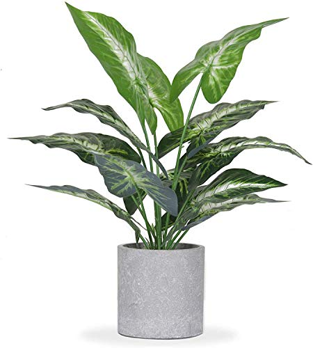 MSUIINT Artificial Plant Potted LushTurtle Back Leaves Bonsai Real Looking Plastic Greenery Pot Fig Plant with Rustic White Planter for House Office Desk Shelf Bathroom Decor (16In)