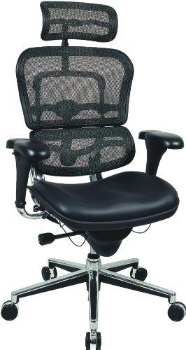 Raynor Ergohuman Ergonomic Chair - Mesh Back, Leather Seat, with Headrest