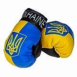 Aimee Mini guantes de boxeo Ucrania