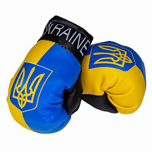 Aimee Mini Boxhandschuhe Ukraine