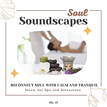 Soul Soundscapes, V07 - Reconnect Soul With Calm And Tranquil Music For Spa And Relaxation