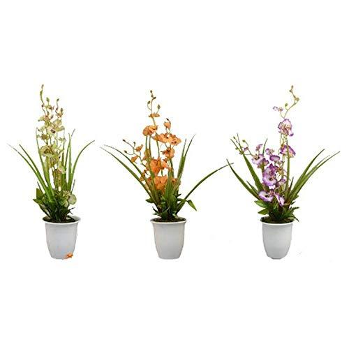 Unishop Set de 3 Macetas de Orquídeas Pequeñas Artificiales de Colores, Ramos de Flores Artificiales, Flores para Decorar Interior, Plantas Decorativas Falsas para Hogar
