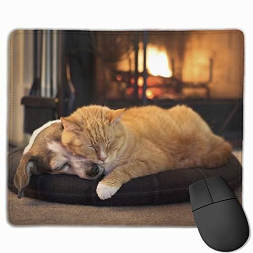 Katze und Hund durch die Kamin-Spiel-Computer-Mausunterlage